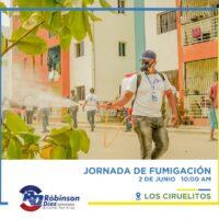 Diputado y aspirante a esa misma posición Robinson Díaz, realiza jornada de fumigación y desinfección